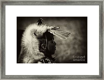 4 - Feathers Framed Print by Paul W Faust -  Impressions of Light