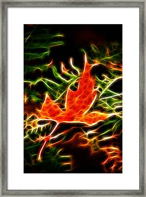Fractal Maple Leaf Framed Print by Andre Faubert