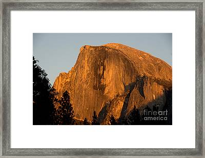 Half Dome, Yosemite Np Framed Print by Mark Newman