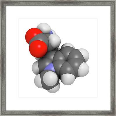 Indoximod Cancer Drug Molecule Framed Print by Molekuul