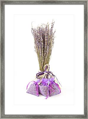 Lavender Framed Print by Tom Gowanlock