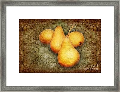 4 Little Pears Are We Framed Print by Andee Design