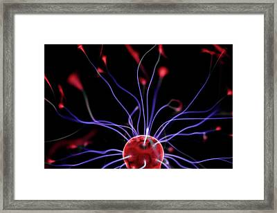 Plasma Ball Framed Print by Science Photo Library