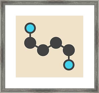 Putrescine Foul Smelling Molecule Framed Print by Molekuul