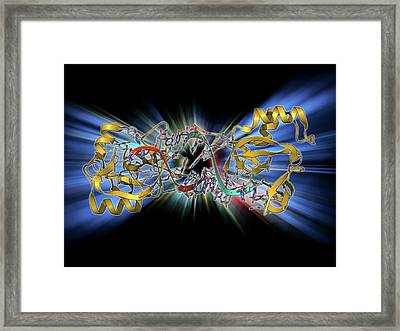 Rna-induced Silencing Complex Framed Print by Laguna Design