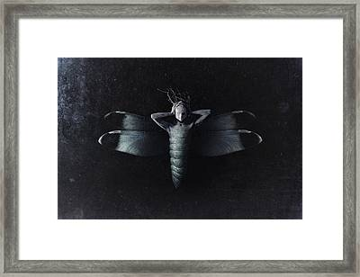 The Moth Framed Print by Victor Slepushkin