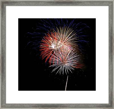 4th Of July 7 Framed Print by Marilyn Hunt