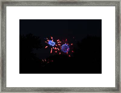 4th Of July Fireworks - 011323 Framed Print by DC Photographer