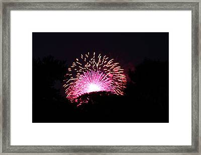 4th Of July Fireworks - 011327 Framed Print by DC Photographer