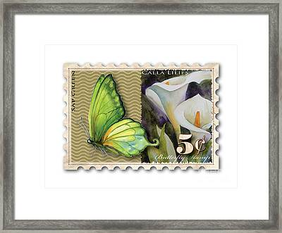 5 Cent Butterfly Stamp Framed Print by Amy Kirkpatrick