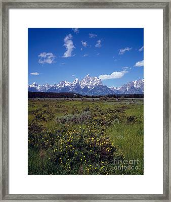 Grand Teton National Park Framed Print by Rafael Macia