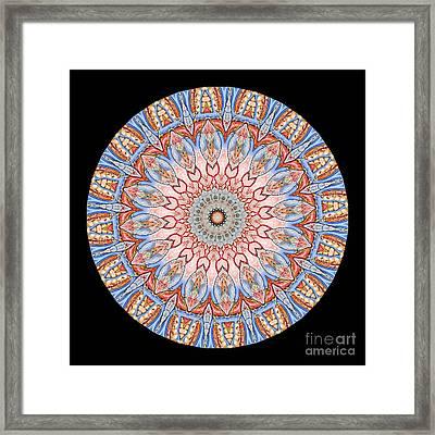 Kaleidoscope Anatomical Illustrations Seriesi Framed Print by Amy Cicconi
