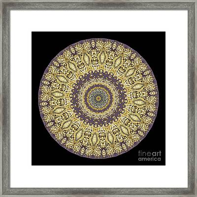 Kaleidoscope Ernst Haeckl Sea Life Series Framed Print by Amy Cicconi