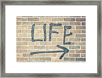 Life Framed Print by Tom Gowanlock