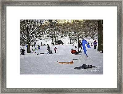Snowboarding  In Central Park  2011 Framed Print by Madeline Ellis