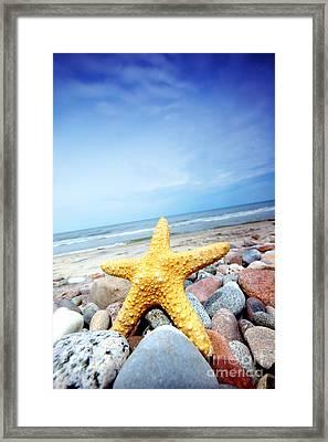 Starfish Framed Print by Michal Bednarek