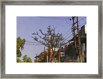 Typical Scene In A Street In A Small Town In India Framed Print by Ashish Agarwal