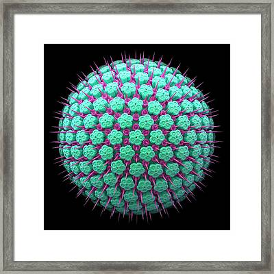 Virus Particle Framed Print by Maurizio De Angelis