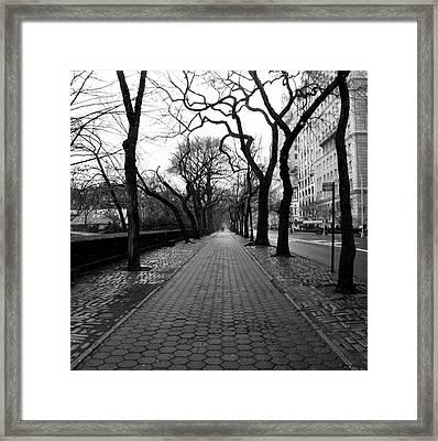 5th Ave Nyc Framed Print by Dillon Milardo