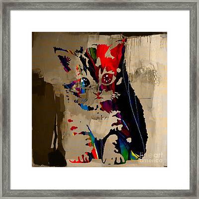 Cat Kitten Framed Print by Marvin Blaine