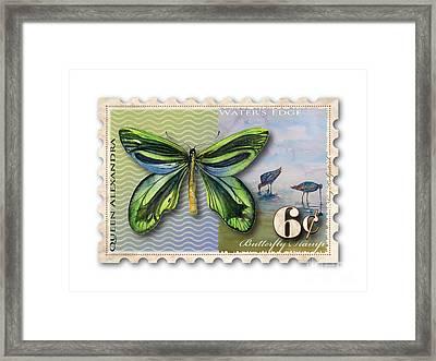 6 Cent Butterfly Stamp Framed Print by Amy Kirkpatrick
