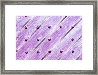 Studded Wooden Surface Framed Print by Tom Gowanlock