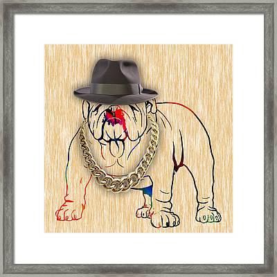 Bulldog Collection Framed Print by Marvin Blaine