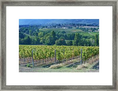 Europe, Italy, Umbria, Near Montefalco Framed Print by Rob Tilley