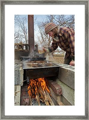 Maple Syrup Production Framed Print by Jim West