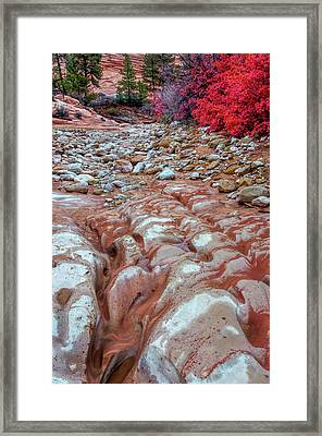 Usa, Utah, Zion National Park Framed Print by Jaynes Gallery