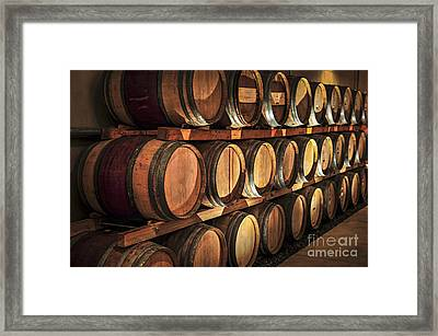 Wine Barrels Framed Print by Elena Elisseeva