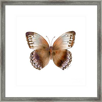 79 Jungle Queen Butterfly Framed Print by Amy Kirkpatrick