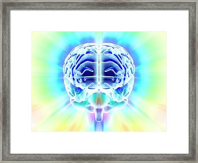 Human Brain Framed Print by Pasieka