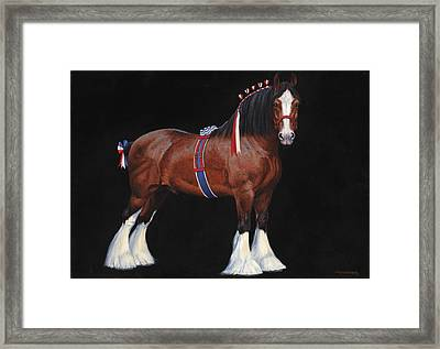 Clydesdale Champion Stallion Framed Print by Don  Langeneckert