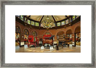 St. Louis Clydesdale Stables Framed Print by Don  Langeneckert