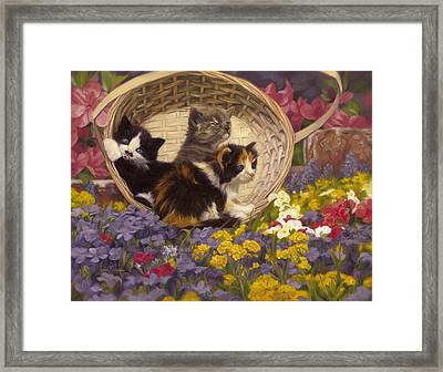 A Basket Of Cuteness Framed Print by Lucie Bilodeau