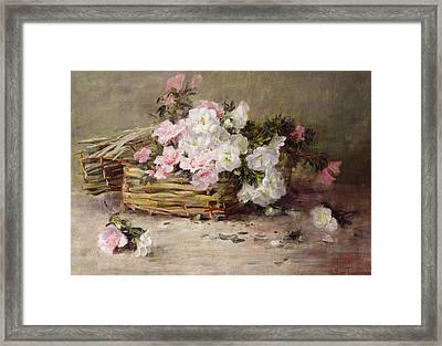 A Basket Of Flowers Framed Print by Margaret von Frankenberg