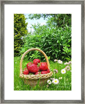 A Basket Of Strawberries Framed Print by Ausra Paulauskaite