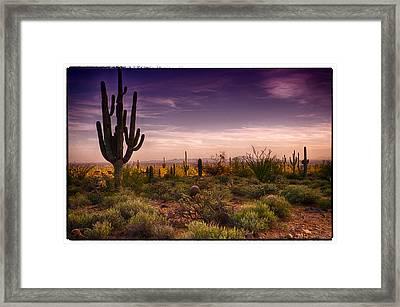 A Beautiful Desert Evening  Framed Print by Saija  Lehtonen