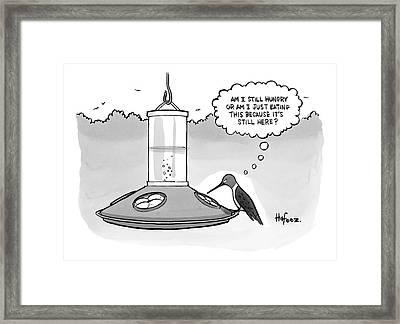 A Bird Is At A Bird Feeder Framed Print by Kaamran Hafeez