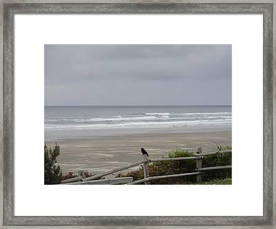 A Bird's Look Framed Print by Lizbeth Bostrom