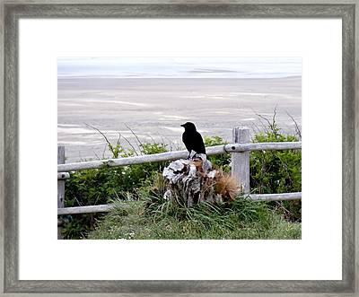 A Bird's Reflection Framed Print by Lizbeth Bostrom