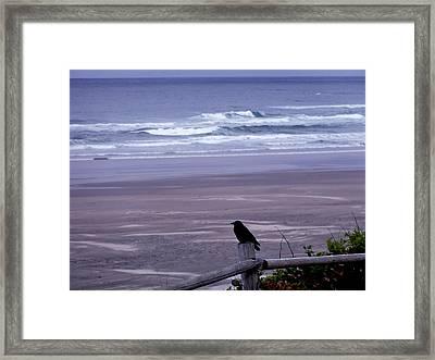 A Bird's View Framed Print by Lizbeth Bostrom