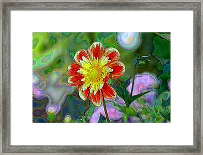 A Blooming Smile  Framed Print by Jeff Swan