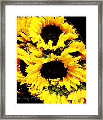 A Bouquet Of Sunshine  Framed Print by Nancy E Stein