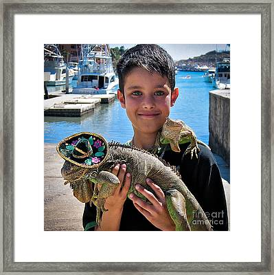 A Boy And His Iguanas Framed Print by Amy Fearn