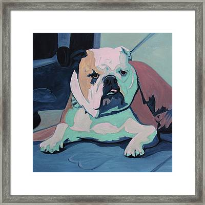 A Bulldog In Love Framed Print by Xueling Zou