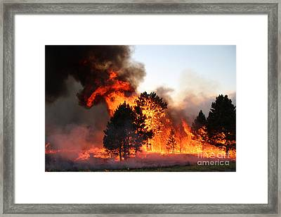 Framed Print featuring the photograph A Burst Of Flames From The White Draw Fire by Bill Gabbert