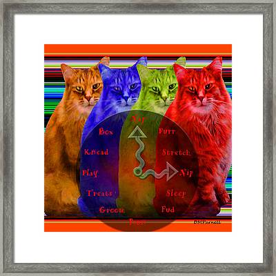 A Cats Life Framed Print by Diane Parnell