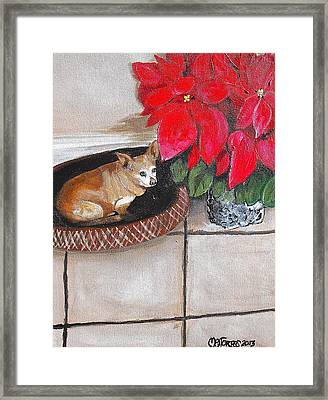 A Chihuahua Christmas Framed Print by Melissa Torres